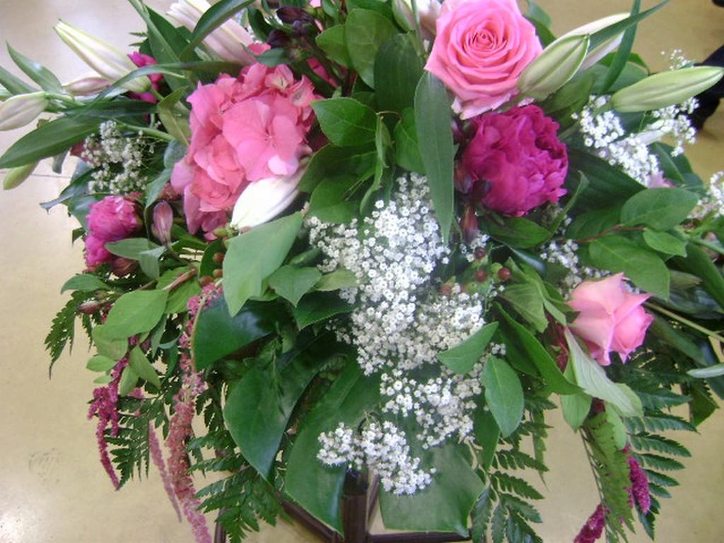 Fond d ecran pc wallpaper salut voulez vous voler - Catalogue de fleurs gratuit ...