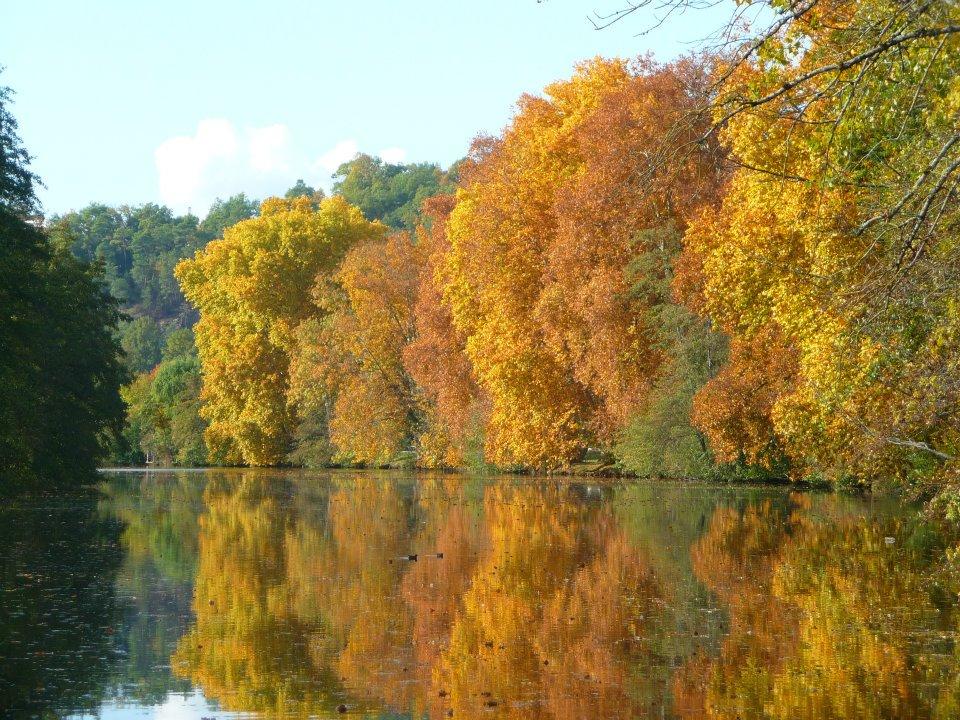 Fond d 39 cran image balade en plein automne photo de - Bureau des paysages alexandre chemetoff ...